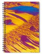 Lm Of Estradiol Spiral Notebook