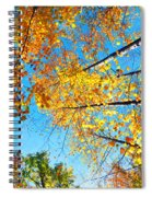 Looking Up At All The Colors Spiral Notebook