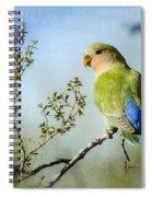 Lovebird  Spiral Notebook