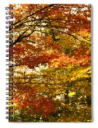 Maple Tree Foliage Spiral Notebook