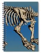 Megatherium Extinct Ground Sloth Spiral Notebook