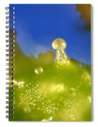 Microscopic View Of Cannabis Sativa Spiral Notebook