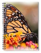 Monarch And Milkweed Spiral Notebook