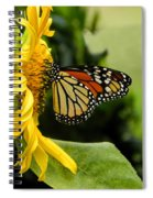 Monarch And The Sunflower Spiral Notebook