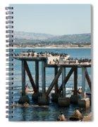 Monterey City Center Spiral Notebook