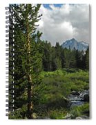 Mosquito Flats Spiral Notebook