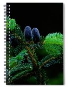 Mountain Life Spiral Notebook