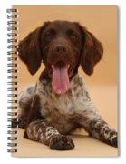 Munsterlander Spiral Notebook