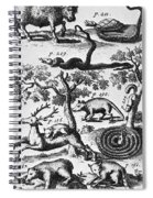 North America: Fauna Spiral Notebook