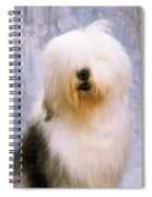 Old English Sheepdog Spiral Notebook