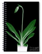 Orchid Plant X-ray Spiral Notebook