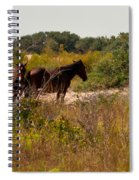 Outer Banks Horses Spiral Notebook