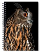 Side Portrait Of An Eagle Owl Spiral Notebook