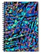 Paradichlorobenzene Crystals Spiral Notebook