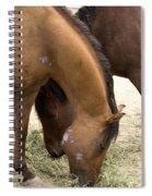 Parallel Ponies Spiral Notebook