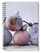 Pears And Apples Spiral Notebook