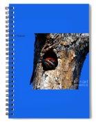 Peeking Out Spiral Notebook