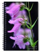 Pretty Pink Penstemon Spiral Notebook