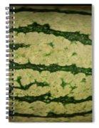 Peripheral Streak Image Of Watermelon Spiral Notebook
