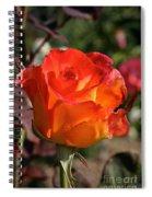 Petal Flames Spiral Notebook