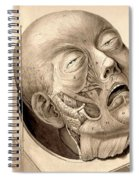 Physiognomical Illustration Of Human Spiral Notebook
