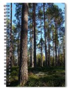 Pine Forest Spiral Notebook