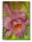 Pink Orchid Spiral Notebook