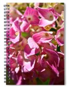 Pink Party Spiral Notebook
