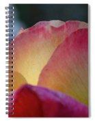Pink Sunshine Spiral Notebook