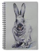 Platinum Spiral Notebook