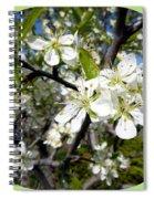 Plum Blossoms Spiral Notebook