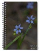 Pointed Blue-eyed Grass Spiral Notebook
