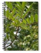 Poison Sumac Spiral Notebook