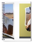 Pony Pose - Gently Cross Your Eyes And Focus On The Middle Image Spiral Notebook