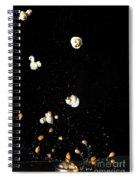 Popcorn Popping Spiral Notebook
