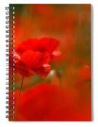 Poppy Flowers 02 Spiral Notebook