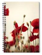 Poppy Flowers 03 Spiral Notebook