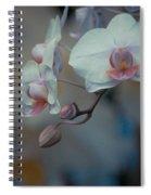 Pretty Pastels Spiral Notebook