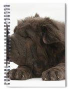 Pup & Kitten Making Friends Spiral Notebook