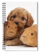 Puppy And Guinea Pigs Spiral Notebook