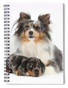 Puppy Pals Spiral Notebook
