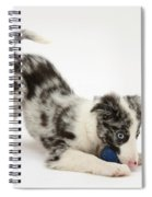 Puppy Playing With A Ball Spiral Notebook