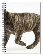Puppy Trotting Spiral Notebook