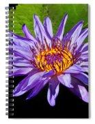 Purple Waterlily Spiral Notebook