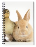 Rabbit And Duckling Spiral Notebook