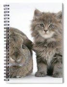 Rabbit And Kitten Spiral Notebook