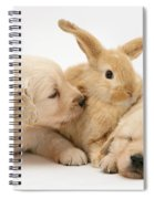 Rabbit And Puppies Spiral Notebook