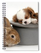 Rabbit And Spaniel Pups Spiral Notebook