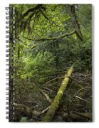 Rain Forest On Vancouver Island Spiral Notebook