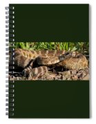 Rattlesnake Spiral Notebook